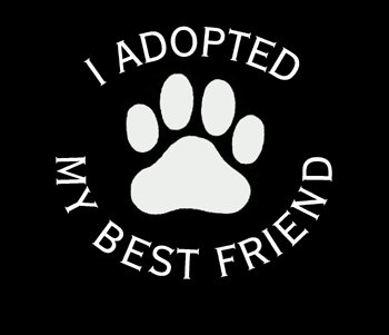 I Adopted My Best Friend T-shirt
