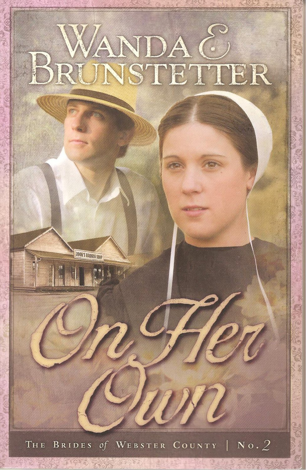 On Her Own - The Brides Of Webster County #2