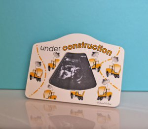Under Construction 2D Ultrasound Picture Frame