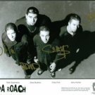 PAPA ROACH GROUP BAND SIGNED AUTOGRAPHED RP PHOTO ALL 4