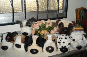 BIg Head dog complete set