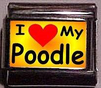 I Love (Heart My Poodle, Custom Italian Charm 9mm