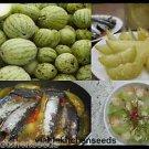 (100) small gourd,melon seed ,แตงโมน้อย,dưa hường nấu canh ,Vegetable seeds