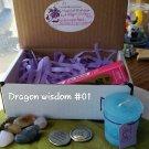 Dragon's wisdom 01B