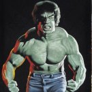 The incredible Hulk Bruce banner Lou Ferringo black velvet oil painting