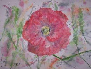 Poppy Burst limited edition print