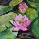 Water lily flower painting print