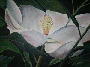 magnolia flower oil painting art print