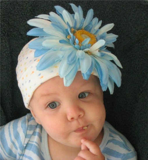 Bebe Blue Blossom