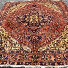 7 x 10 Stunning Genuine Persian Bakhtiari Tribal Oriental Hand Knotted Wool Rug