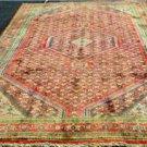 6'6x9'10 Rare Genuine S Antique Persian Bijar Herati Hand Knotted Wool Area Rug