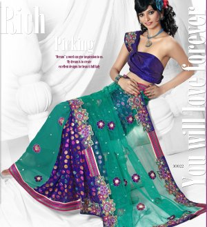 Partywear Net Embroidered Sari With Unstitch Blouse - TS 30022 N
