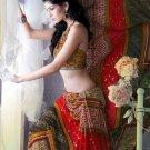 Faux Georgette Partywear Designer Printed Saree Sari With Blouse - X 2523 N