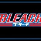Bleach Photo License Plate