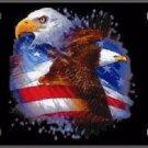American Flag Eagles Metal Novelty License Plate