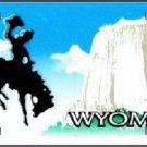 Wyoming Novelty State Background Blank Metal License Plate