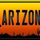 Cowboy Hat Arizona Scenic Background Novelty Metal License Plate