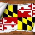 Maryland Flag Scroll Novelty Metal License Plate