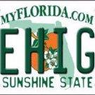 Lehigh FL Background Novelty Metal License Plate
