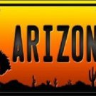 Rodeo Arizona Scenic Background Novelty Metal License Plate