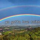 Ya Gotta Love Rainbows Mountain Scene Photo License Plate