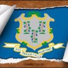 Connecticut Flag Scroll Novelty Metal License Plate