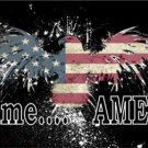 It's Time America Fireworks Eagle United States Flag Photo Plate