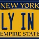 Only in NY New York Background Novelty Metal Novelty License Plate