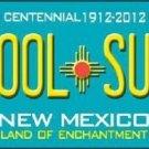 Skool Suks New Mexico Novelty Metal License Plate