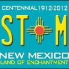 Best Mom New Mexico Novelty Metal License Plate