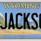 Jackson Wyoming Metal Novelty License Plate
