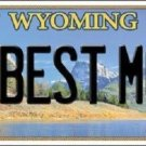 Best Mom Wyoming Metal Novelty License Plate
