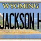 Jackson Hole Wyoming Metal Novelty License Plate