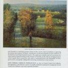 1982 John Terelak After the Rain Vintage 1982 Art Exhibition Ad Advert Grand Central Art Galleries