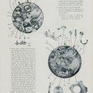 1956 La Montre Reveil A. Schild No. 1475 & Venus No. 320 1956 Swiss Magazine Article Horology