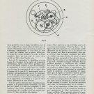 1944 La Montre Automatique Automatic Watch Repair 1944 Swiss Magazine Article Horology Suisse