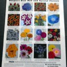 Vintage 1936 Burpee Burpees Garden Flowers Print Ad Publicite Advert W Atlee Burpee Philadelphia
