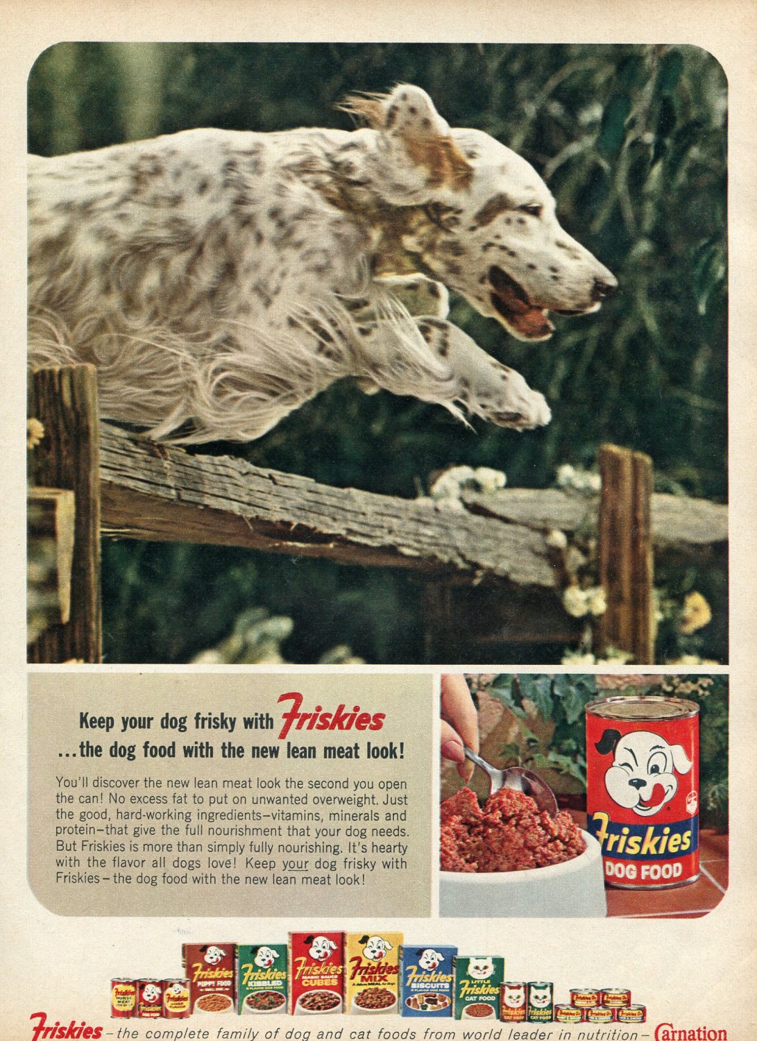 1964 Friskies Dog Food with the New Lean Meat Look Carnation Cats Pets Ad Advert