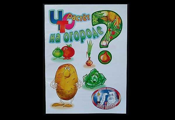 RUSSIAN LANGUAGE WHAT IS GROWING IN THE VEGETABLE GARDEN? CHILDRENS LEARNING BOOK