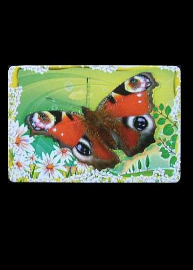 SET OF THREE BUTTERFLY RUSSIAN LANGUAGE CALENDAR BOOKMARK CARDS 2009