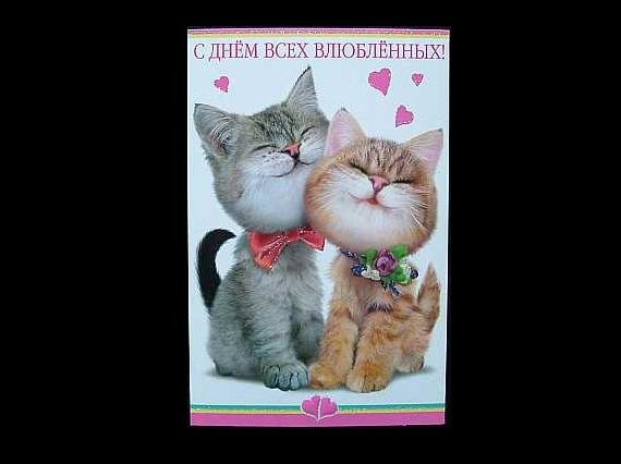 HAPPY CATS RUSSIAN LANGUAGE VALENTINES CARD