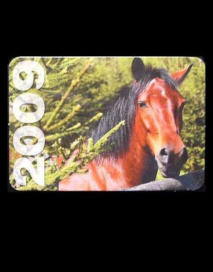BAY HORSE RUSSIAN UKRAINIAN LANGUAGE CALENDAR BOOKMARK 2009