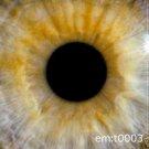 EMT 0003 GREGOR SAMSA MIA BRANNAN LANE BEATSYSTEM CD
