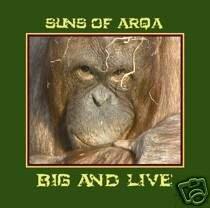 SUNS OF ARQA BIG & LIVE SUPERB TRIBAL DUB AMBIENT CD