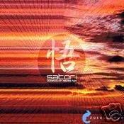 SATORI LUNAR SOUND BN LOCO ABAKUS PHULLY DUB AMBIENT CD