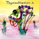 VARIOUS PSYMEDITATION 2 AMBIENT DUB TRANCE CD