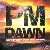 PM DAWN A WATCHER'S POINT OF VIEW CD IMPORT - NEW