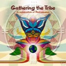 GATHERING THE TRIBE ANTONIO TESTA ADHAM SHAIKH RARE CD
