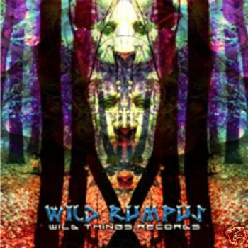 WILD RUMPUS HOODWINK REALITY GRID ERROR CORRECTIVE CD