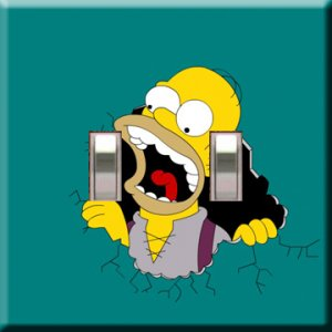 Homer Simpson Double Switchplate Cover